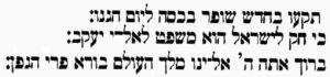 kiddush-Rosh-Hashanah